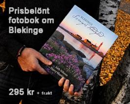 Köp boken här!
